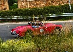 Circuito di Avezzano 2015 (298)