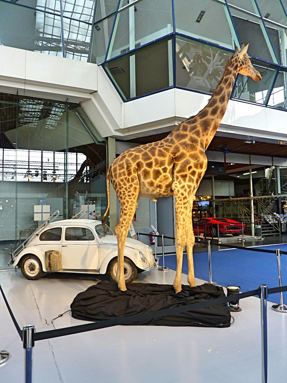 Autoworld Museum Brussels (92).jpg