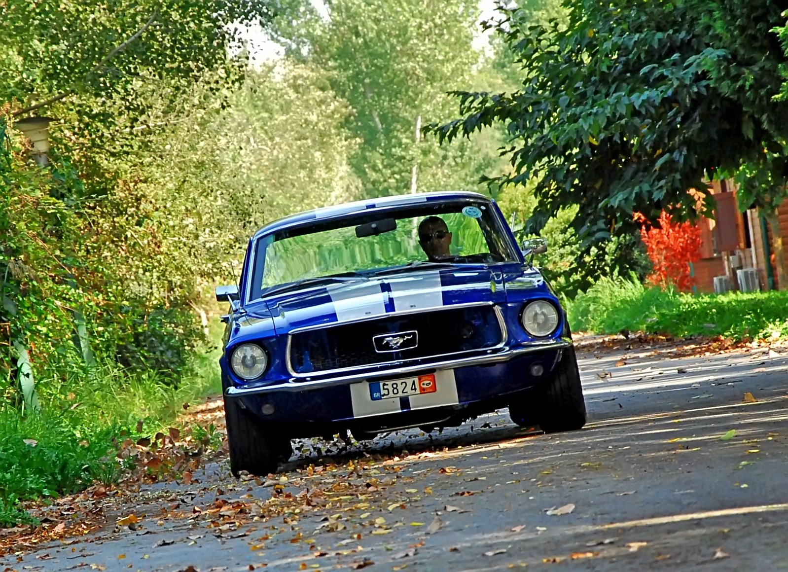 1968 Ford Mustang 289 (23).jpg
