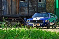 1968 Ford Mustang 289 (35).jpg