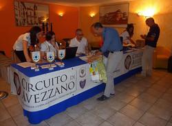 Circuito di Avezzano 2015 (6)