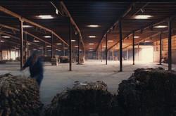 Day's Tobacco Warehouse, Asheville, NC #2 (12-88)