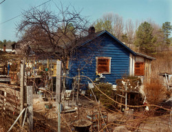 Nellie Mae Rowe's house (2-77) #2