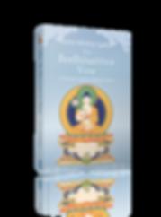 book-Bodhisattva-vow2-3d.png