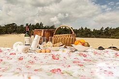 picknick perfect.jpg