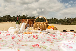 picknick perfect.jpg