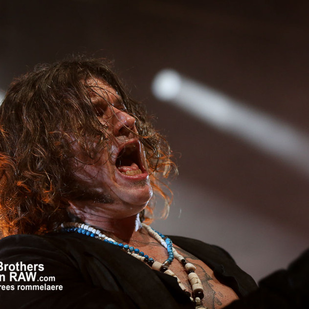 Rival Sons - The Scheepdogs-2385