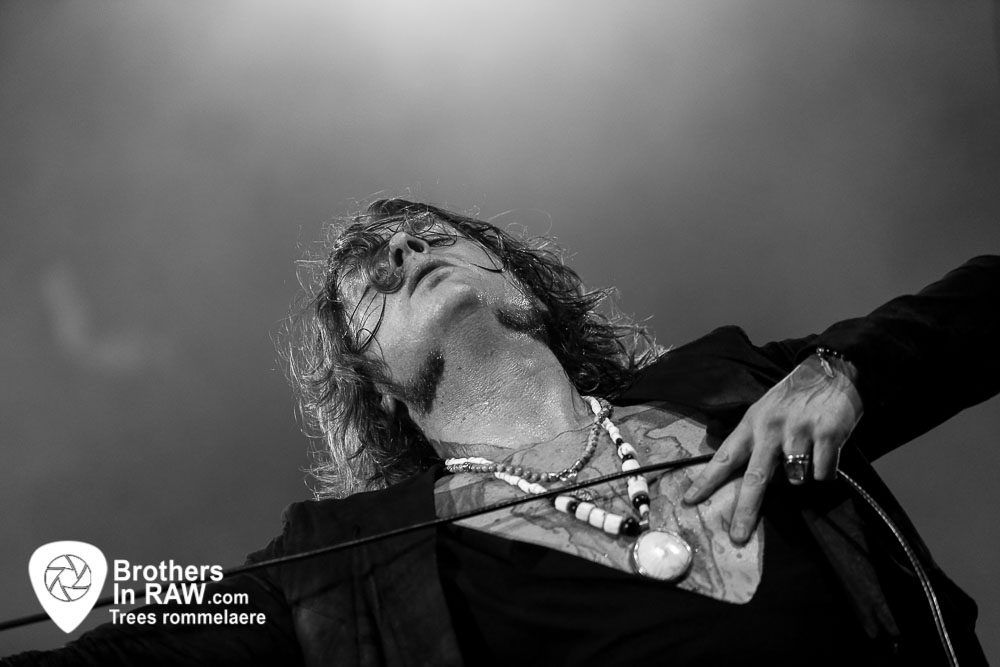 Rival Sons - The Scheepdogs-2414