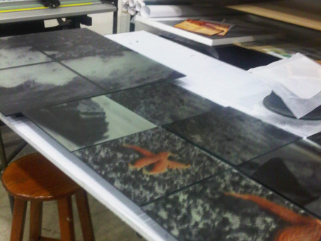 Recogiendo e Instalando cuadros en Ferrini