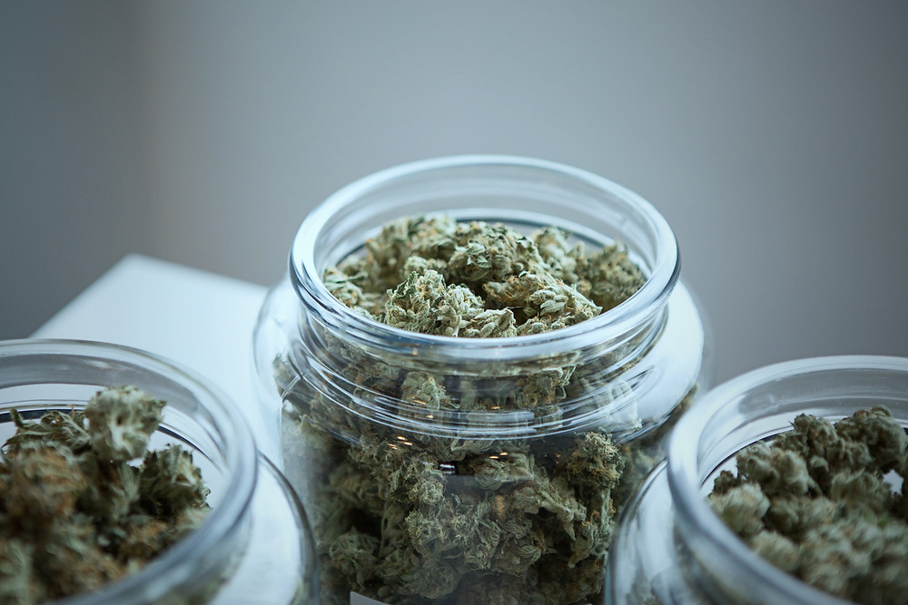 crucial pictures cannabis in jars