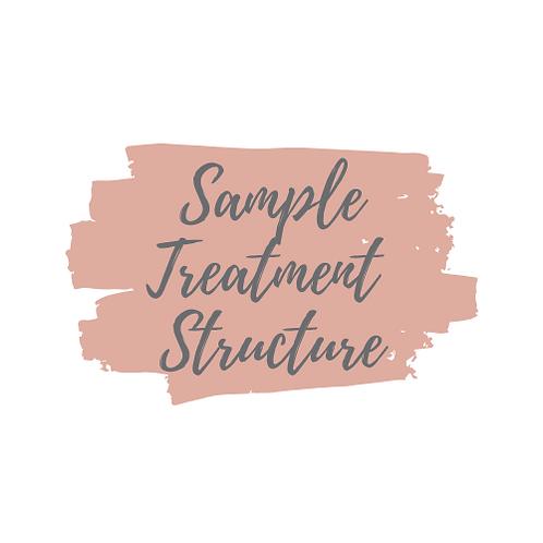 Treatment Session Structure PDF