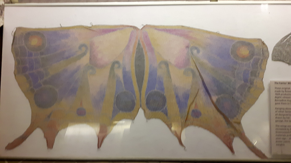 Gossamer wings hand-painted by Rowena for one of her early productions