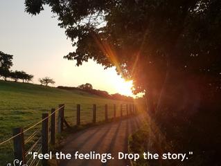 Feel the feelings
