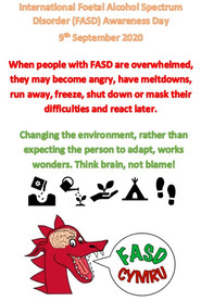 Change the environment, not the individual with FASD - think brain, not blame