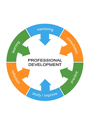 How to make teacher professional development effective?