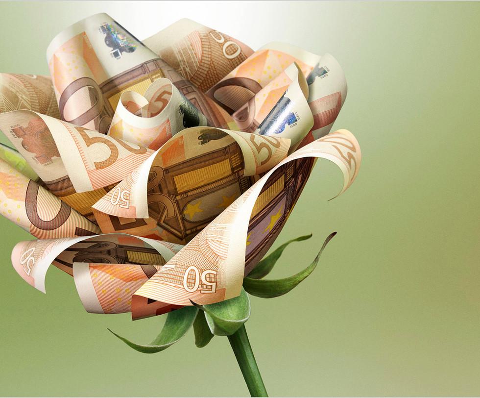 ABN AMRO Moneyflower.jpg