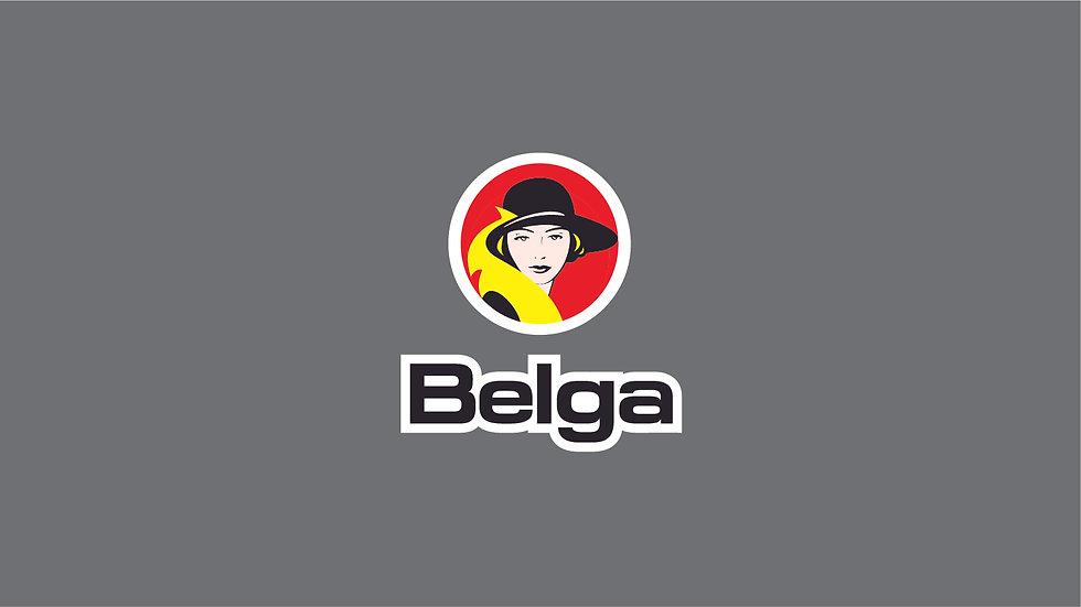 BELGA Waterslide Decal Sheet