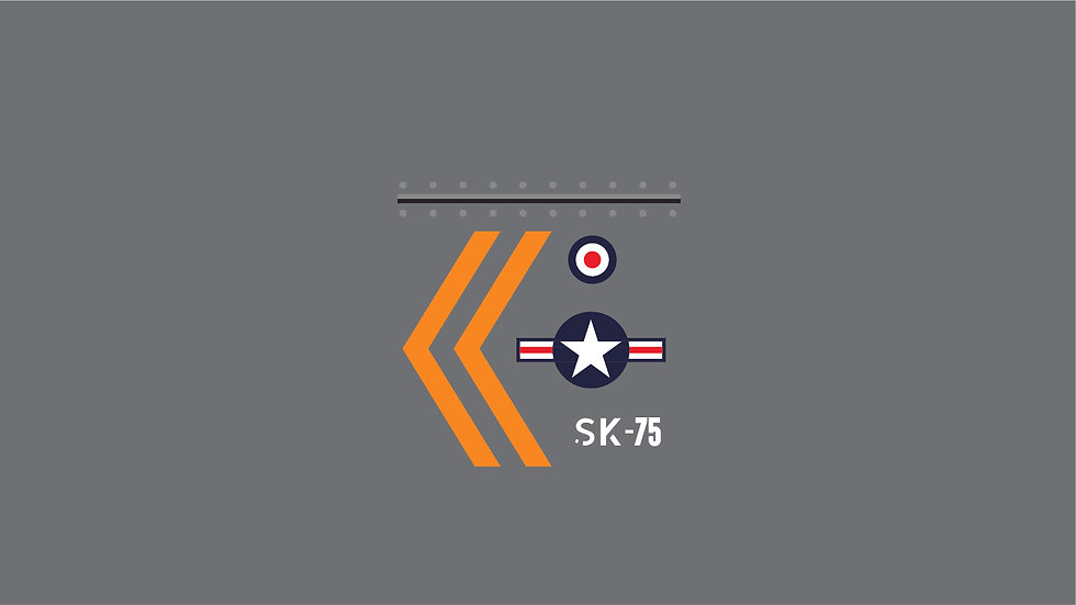 MILITARY INSIGNIA Style A Waterslide Decal Sheet