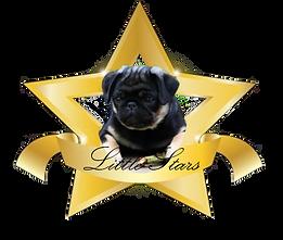 LittleStarsLogo!.png