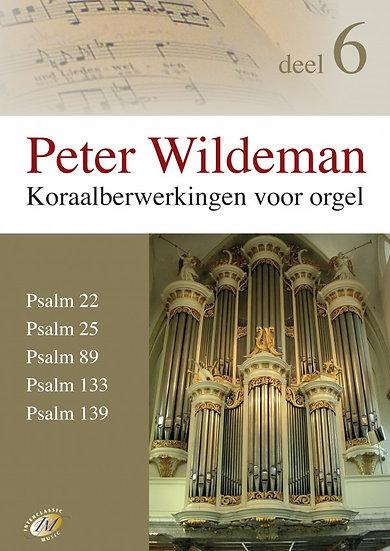 Koraalberwerkingen 6 - Peter Wildeman