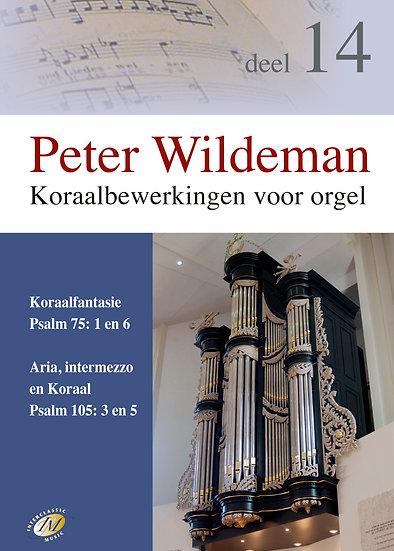 Koraalberwerkingen 14 - Peter Wildeman