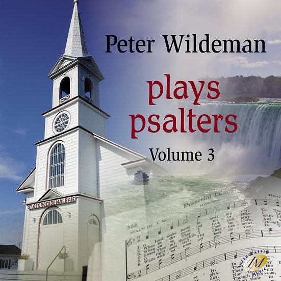 Peter Wildeman Plays Psalters 3