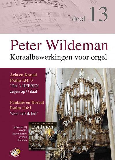 Koraalberwerkingen 13 - Peter Wildeman