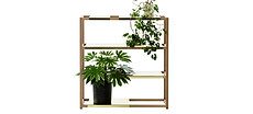 Botanic_Iso-slider2.jpg