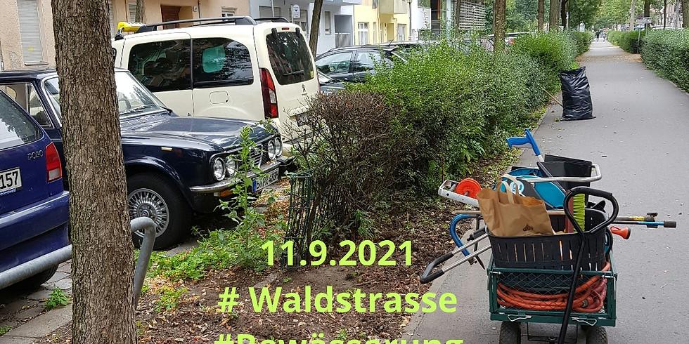 11.9.2021 die 20. Mitmach Aktion  #Waldstrasse #Bewässerung #Grünpflege #clean up