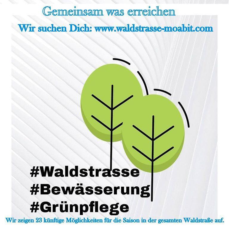 9.10.2021    #Waldstrasse #Bewässerung #Grünpflege