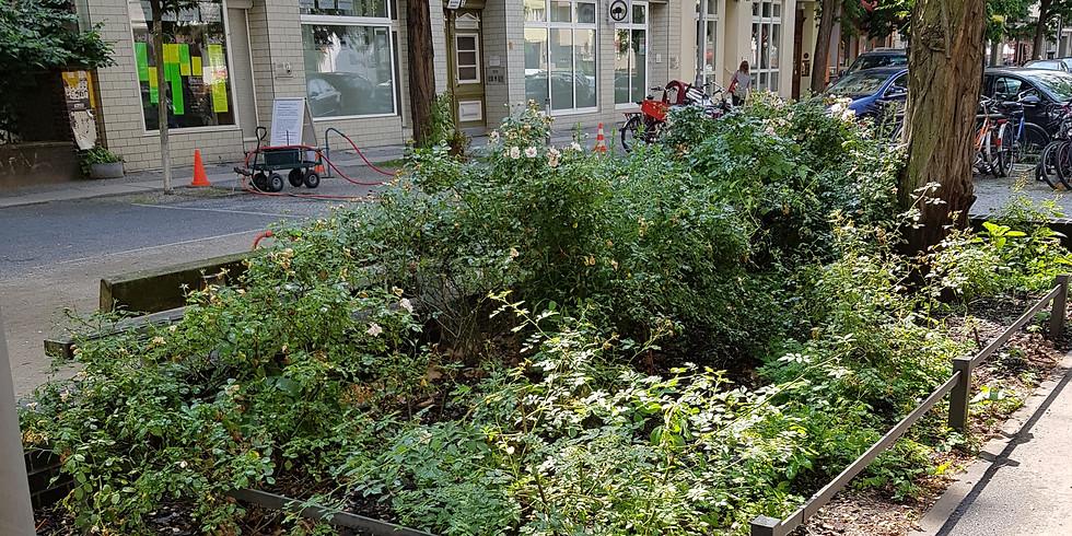 Sa. 21.8.2021 - die 17. ehrenamtliche Hydranten- Bewässerung mit Grünpflege