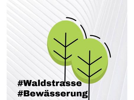 """"""" Warum denn Waldstraße ? """""""