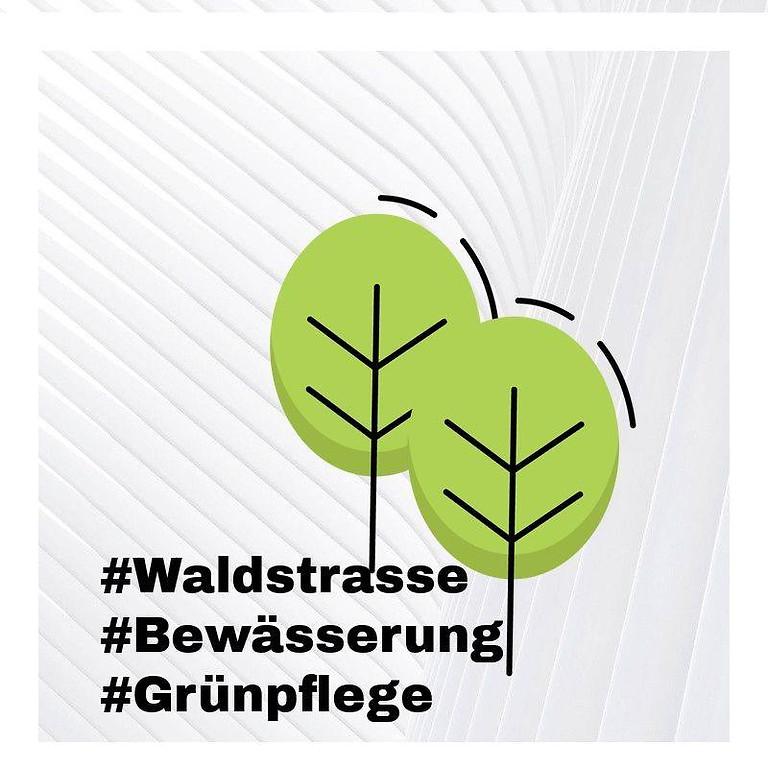 """12.1.20: """"Grünflächenreinigung"""" durch uns Waldstraßen Anwohner - 10.-12. Uhr"""