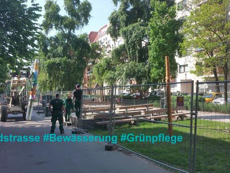 Aktive Moabiter     #Waldstraße #Bewässerung #Grünpflege