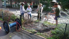 #Waldstraße #Bewässerung #Grünpflege