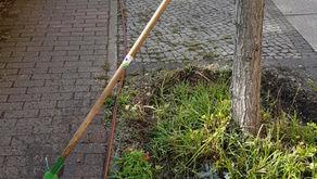 Berlins einzige Hydranten-Bewässerungs-Initiative die Moabiter Waldstraßen-Initiative.