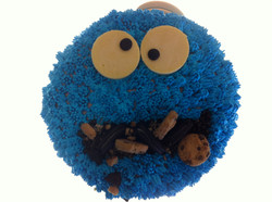 CR-013a   Cookie Monster
