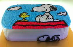 CR-061   Snoopy