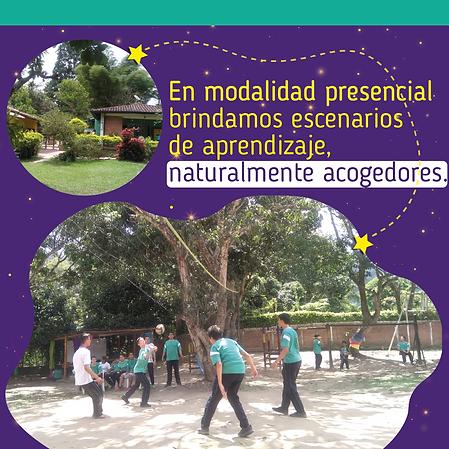 CAMPAÑA_OFICIAL_Mesa_de_trabajo_1_copia