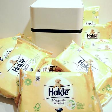 Toicube und Hakle 1.png