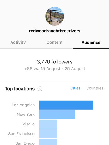 Your-LA-Office-Social-Media-Agency-124.j