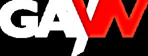 GAYVNLOGO_09 copy.png