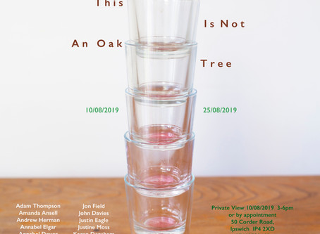 This Is not An Oak Tree