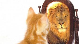 L'effet miroir