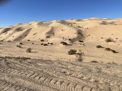 PK Dunes2