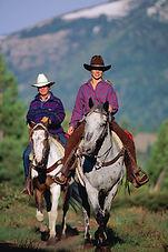 horseback_1.jpg