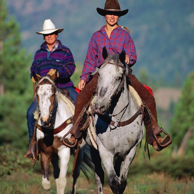 Horseback in Elk Wilderness