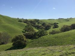 Lund Ranch views