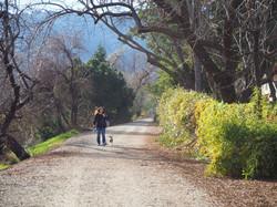 Arroyo del Valle trail user