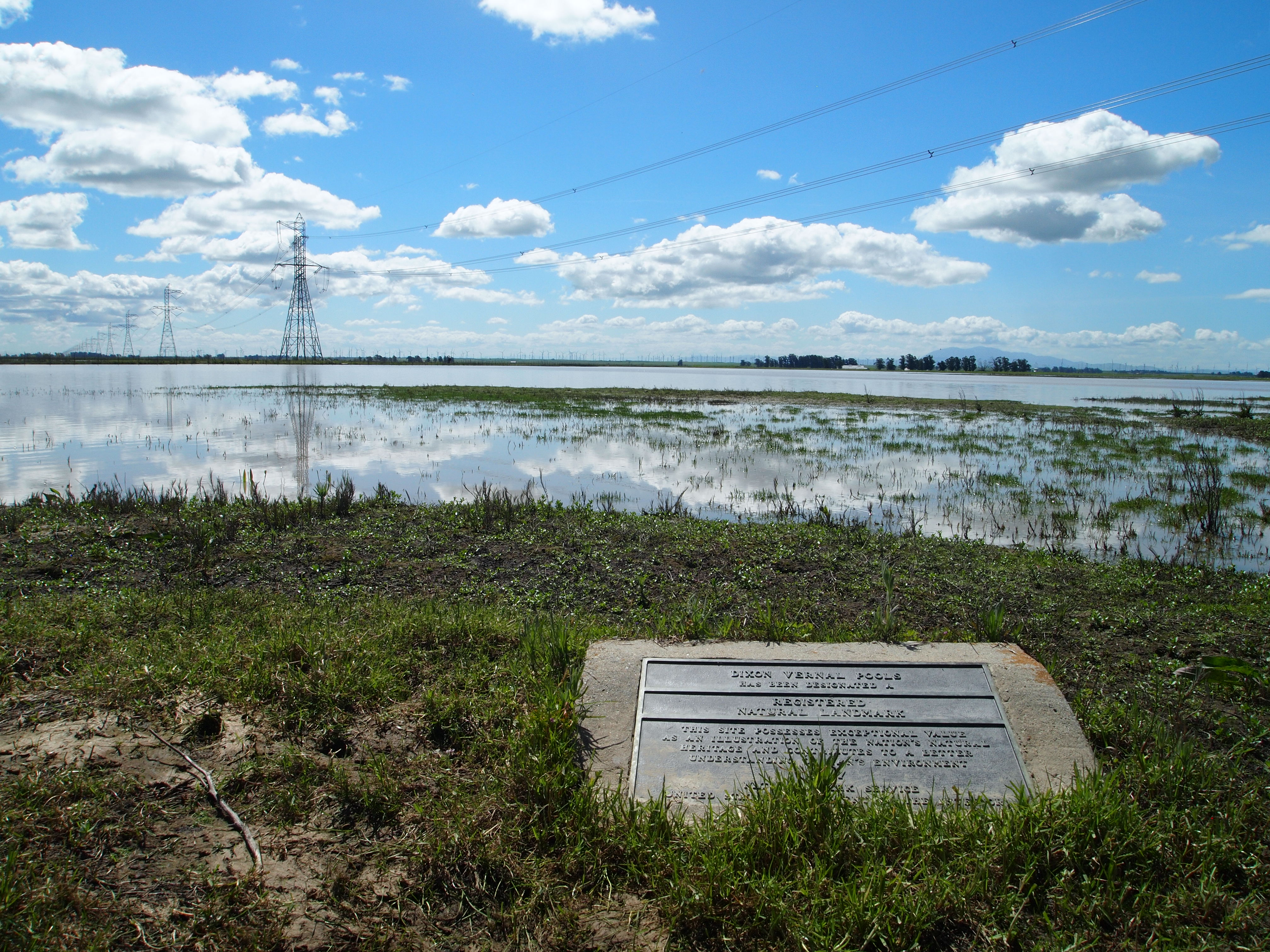 Dixon Vernal Pools National Landmark